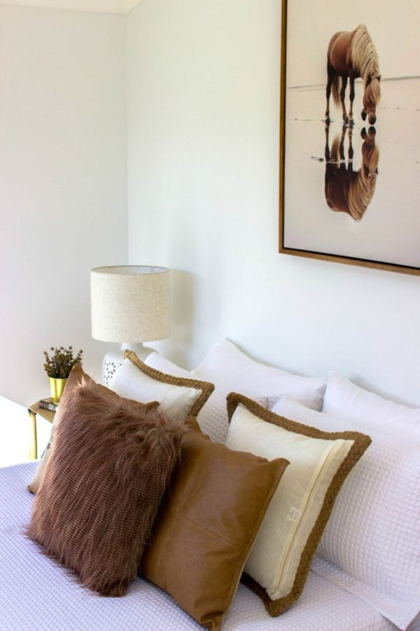 Plush Design Interiors